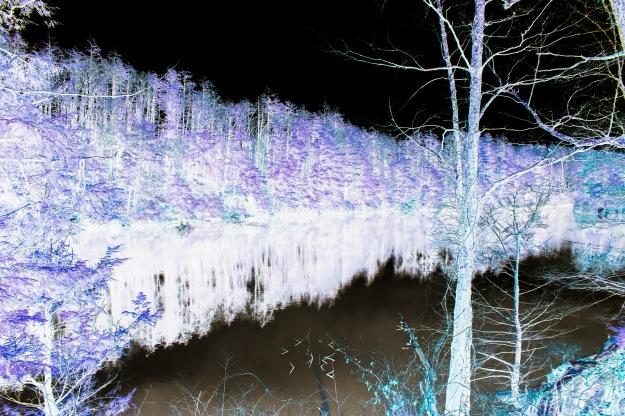 fahnestock pelton pond